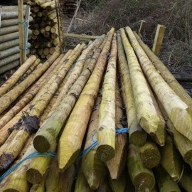 Peeled and Pointed Pine Posts and Stakes