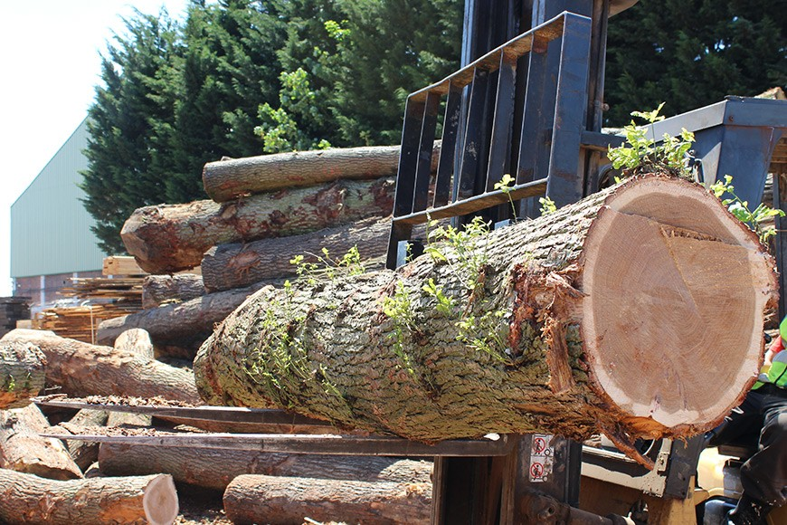 Choosing The Right Timber Merchants